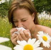 Памятка для больных с инсектной аллергией
