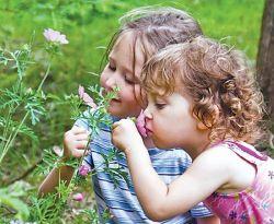 Что такое аллерговакцинация?