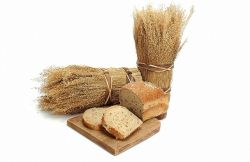 Пищевая аллергия: продукты с различной степенью аллергизирующей активности